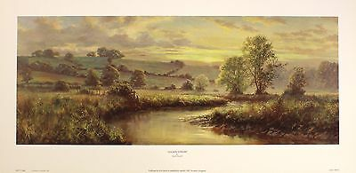 "DAVID DIPNALL ""Golden Stream"" river landscape NEW art SIZE:25cm x 64cm  RARE"