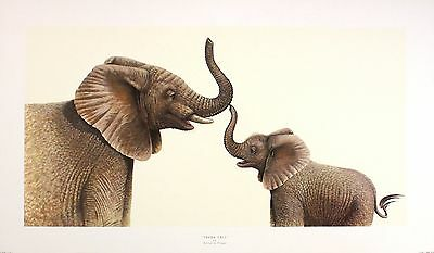 "WARWICK HIGGS ""Trunk Call"" ELEPHANT calf, cute art SIZE:30cm x 58cm  RARE"