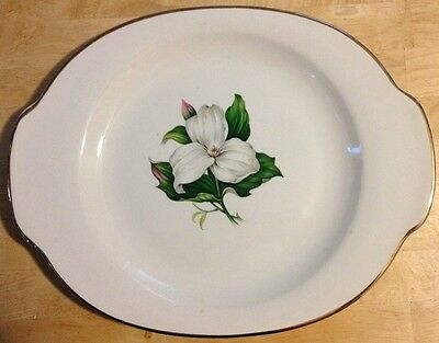 Oval platter - Glamour by American Limoges - Trillium