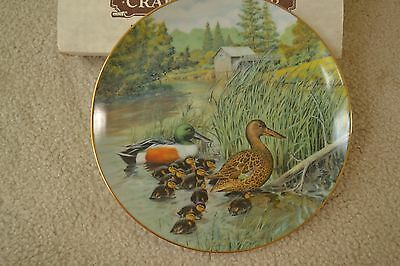 """Knowles Collector Plate """"The Northern Shoveler, Living with Nature, Box, #181"""