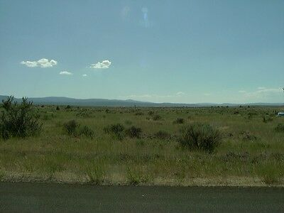 Foreclosed California Recreational Property! 1.02 Acres