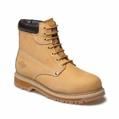 Mens Dickies Cleveland Ankle Safety Work Boots Honey Steel Toe Cap Fa23200