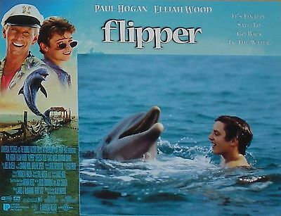 FLIPPER - 11x14 US Lobby Cards Set - Elijah Wood, Paul Hogan - DOLPHINS