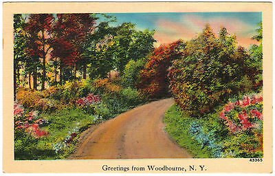 Greetings from Woodburne, NY New York, linen postcard