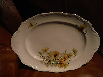 "Antique Mitterteich Bavaria Germany Porcelain OVAL SERVING PLATE ""Susan"" Pattern"