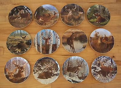 Complete Plate Set of 12 PRIDE OF THE WILDERNESS Deer Buck Doe Danbury Mint