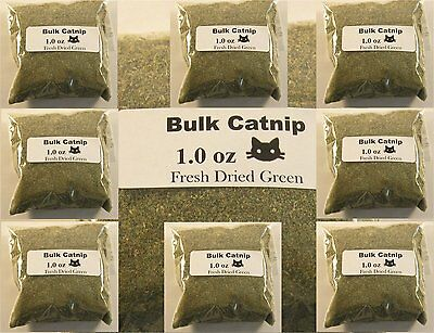 Catnip BULK - USA Grown - Fine Cut Fresh Dried Green Potent  (1oz-16oz) + Gift