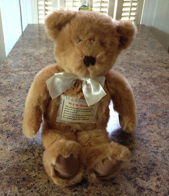 """Me and My Mommy Picture Bear Stuffed Animal From Avon 15"""" Tall Teddy"""