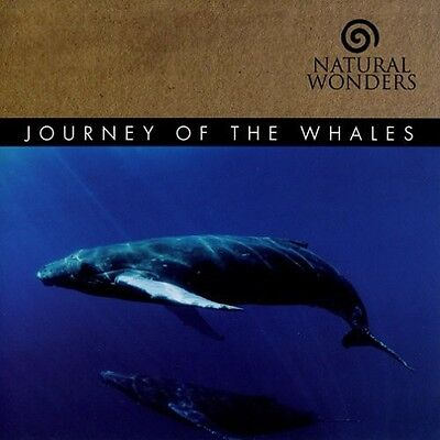 David Arkenstone - Journey of the Whales [New CD]