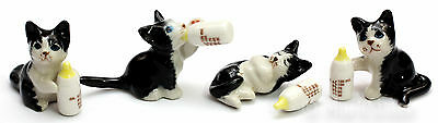 Figurine Animal Ceramic Statue 4 Cat Kitten White and Black with Bottle - CCK030
