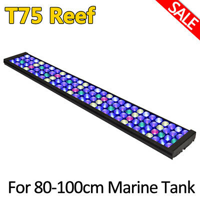 DSunY 36''3ft Aquarium Marine Tank 40 LED Light Lamp lampara para corales y pec