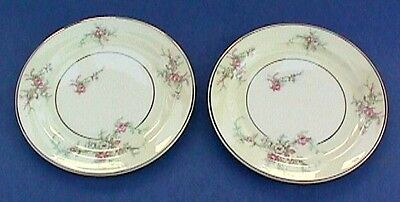 TST Taylor Smith China MOSS Pink ROSES Pattern SET 2 PLATES B&B or Dessert Vtg