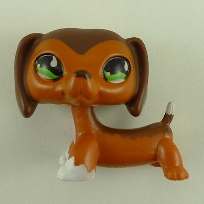 littlest pet shop #675 special edition Chocolate brown Dachshund dog#