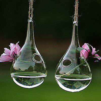 Hanging Glass Plant Flower Plant Vase Hydroponic Container Home Wedding Decor