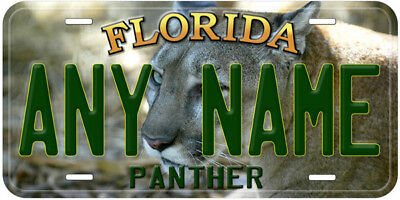 Panther Florida Any Name Personalized Car Novelty License Plate