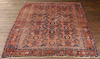 VERY RARE ANTIQUE AFSHARI TRIBAL PILE RUG KUCHAN 1890 to 1920