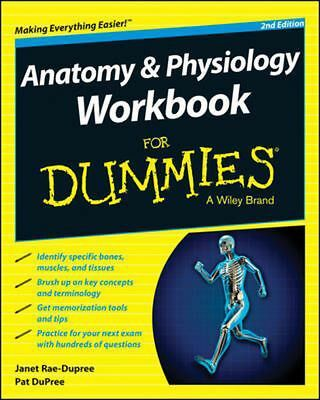 Anatomy and Physiology Workbook for Dummies by Consumer Dummies Paperback Book (