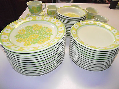 """20pc 4ppl Dinner Plate Salad Plate Franciscan """"Picnic"""""""