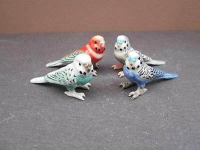 Klima Budgerigar Klima Miniature Budgies Four Designs Available Gift Boxed
