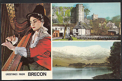 Wales Postcard - Greetings From Brecon   A6305