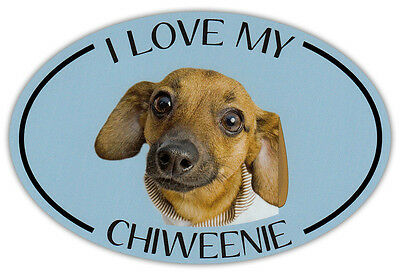 Oval Dog Breed Picture Car Magnet - I Love My Chiweenie - Bumper Sticker Decal
