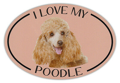 Oval Dog Breed Picture Car Magnet - I Love My Poodle - Bumper Sticker Decal