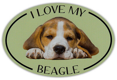 Oval Dog Breed Picture Car Magnet - I Love My Beagle - Bumper Sticker Decal