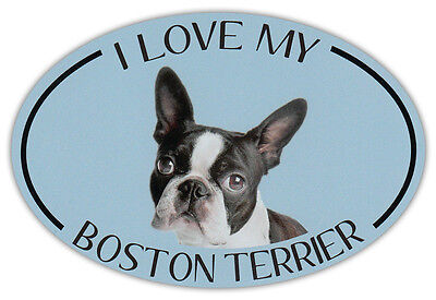 Oval Dog Breed Picture Car Magnet - I Love My Boston Terrier - Bumper Sticker