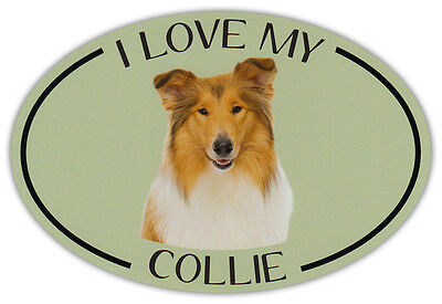 Oval Dog Breed Picture Car Magnet - I Love My Collie (Border) - Bumper Sticker