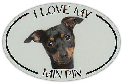 Oval Dog Breed Picture Car Magnet - I Love My Min Pin (Miniature Pinscher)