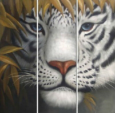 LARGE TIGER CANVAS PICTURE BLACK WHITE oil painting (no framed))28
