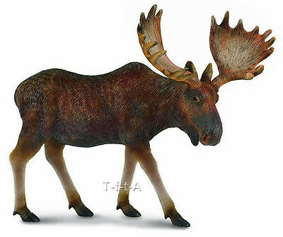 FREE SHIPPING | CollectA 88335 Moose Forest Life Replica - New in Package