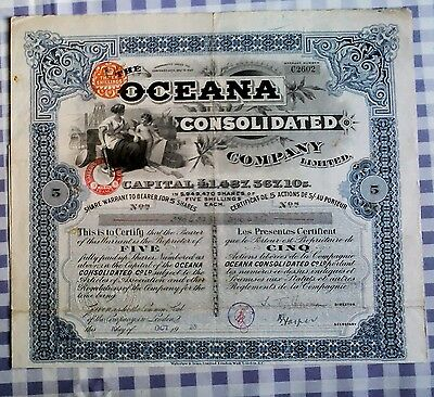 Share certificate Oceana Consolidated 5 shares Sth Africa 1928