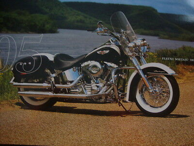 Harley Davidson 2005 FLSTN SOFTAIL DELUXE  Poster 11x8.5 Poster. Frame it.