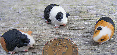 1:12 Scale Dolls House Miniature Single Resin Guinea Pig Garden Accessory Type A