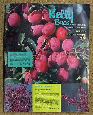 Kelly Bros Nurseries Dansville, New York Catalog 1966 Flowers Fruits Shrubs Etc