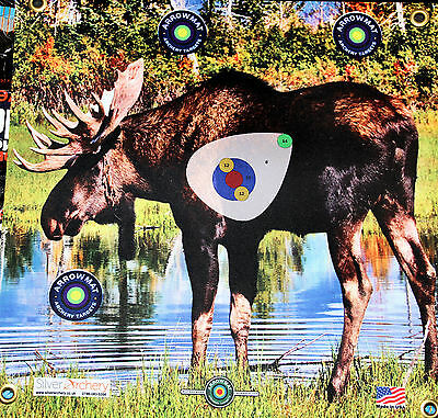 "Archery Target -1500 Plus Shots! Moose  With Scoring Zone! 17""x 17"""