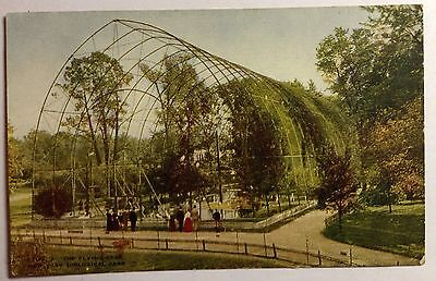 THE FLYING CAGE    NEW YORK ZOO EARLY 1900s  POST CARD #1136