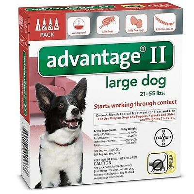 4 MONTH Advantage II Flea Control RED (for Dogs 21-55 lbs)