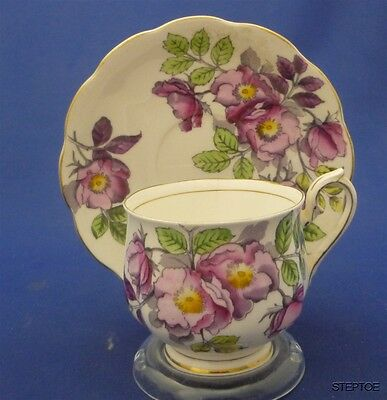 Royal Albert Bone China Hand Painted Dog Rose Tea Cup & Saucer Duo Set