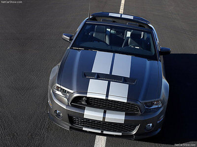 Pair of Racing Rally Stripes w/ Pin Stripe graphics decal Custom Size & Color b