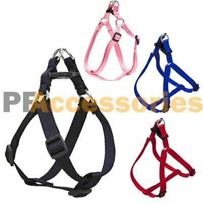 Small Dog / Cat / Pet Control Harness Step in Walk Collar Safety Strap Vest Med