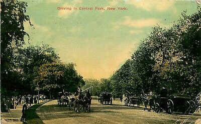 NEW YORK NY DRIVING IN CENTRAL PARK POSTCARD c1910