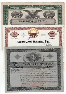 Lot of 3 mixed Stock Certificates