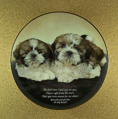Cherished Shih Tzus PAWPRINTS ON MY HEART Plate Dog Puppy Danbury Mint Charming!