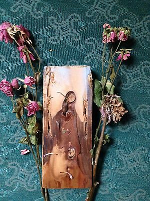 Blessed Scrapwood Virgin Mary Impression