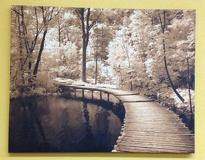 "Beautiful Fall Scene Bridge Over Pond With Leaves Canvas App 38""x 32"""