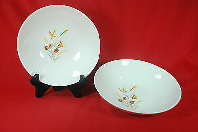 """Set of 2 TAYLOR SMITH EVER YOURS """"AUTUMN HARVEST"""" 8"""" SERVING BOWLS"""