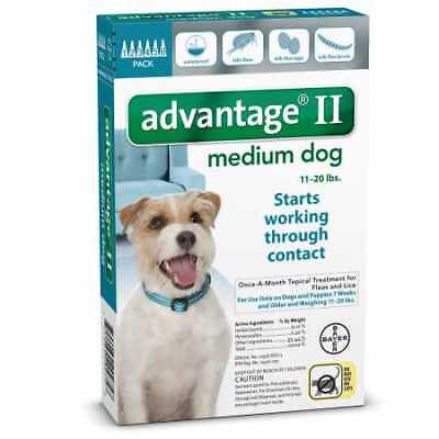 6 MONTH Advantage II Flea Control TEAL (for Dogs 11-20 lbs)