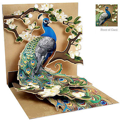 Up With Paper - PEACOCK & MAGNOLIAS - #UP-WP-1037